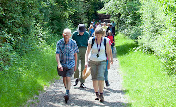 people walking in hainault forest